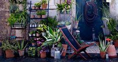 IKEA | Urban farming en verticaal tuinieren - IKEA