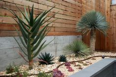 I wonder if I could cover our odd front planter with wood like this?