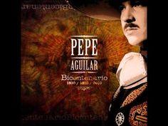 El Toro Viejo ~ Pepe Aguilar (+playlist)