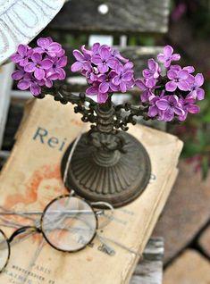 ❥ lilacs