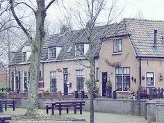 The Nederlands