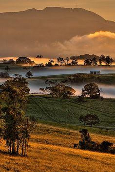 Mount Bellenden Ker, Queensland, Australia