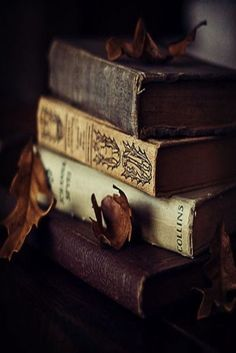 At Pretty Page Turner our favorite cover models are books. We can't get enough beautiful book photography of old books and their vintage bookshelf. Old Books, Antique Books, Rustic Books, I Love Books, Books To Read, Book Aesthetic, Autumn Aesthetic, World Of Books, Dream Library