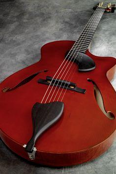 D'Ambrosio Guitars Allegro custom