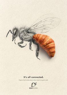 Bio Suisse ads