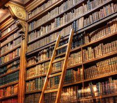 "Biblioteca ""Assemblée Nationale Française"" nel Palais Bourbon di Parigi. Foto di Iain McLauchlan"