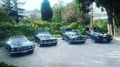 Mustangs in Black Convertible Ford Mustang fleet lined up at Overnewton Castle in Melbourne for Halem and Jonida's wedding, including our 1966 GT, our two 1967 GTs and our 1966 Shelby.
