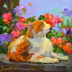 Colorful Inspiration! Paint with Dreama online...Learn more > http://dreamatolleperry.com