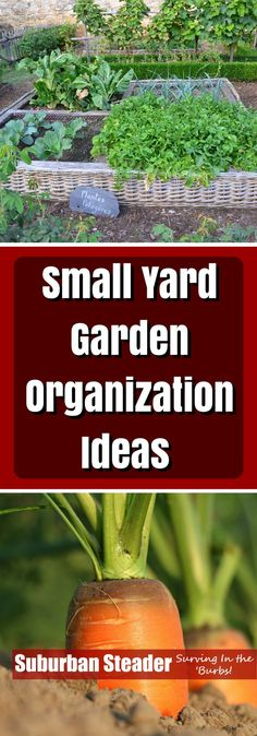 Don't have a lot of space to garden? Check out our creative ways to increase your yard garden productivity on a small plot!