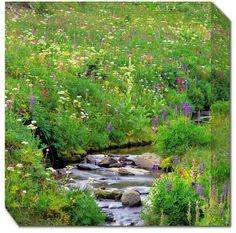 Wildflowers & Stream Weatherprint Art