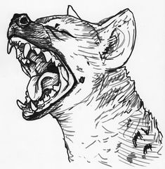 Yawning-Hyena-tattoo-stencil-by-silvercrossfox.jpg (900×918)