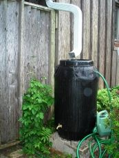 Using Rain Barrels: Learn About Collecting Rainwater For Gardening | Gardening Know How
