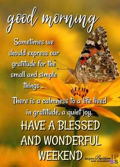 """""""Gratitude turns what we have into enough. Joy is the simplest form of gratitu… """"Gratitude turns what we have into enough. Joy is the simplest form of gratitude . Good Morning Friends Images, Good Morning Happy Sunday, Morning Quotes Images, Good Morning Prayer, Morning Love Quotes, Good Morning Texts, Good Morning Funny, Good Morning Inspirational Quotes, Morning Greetings Quotes"""