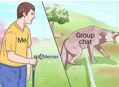 Me/Meme/Group chat