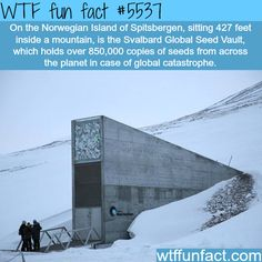 : Svalbard Global Seed Vault - WTF fun facts | March 27 2016 at 11:25PM | http://www.letstfact.com