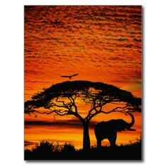 $$$ This is great for Elephant Under Broad Tree Postcards Elephant Under Broad Tree Postcards Yes I can say you are on right site we just collected best shopping store that haveReview Elephant Under Broad Tree Postcards Online Secure Check out Quick and Easy...Cleck See More >>> http://www.zazzle.com/elephant_under_broad_tree_postcards-239485177073407894?rf=238627982471231924&zbar=1&tc=terrest