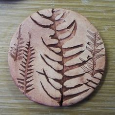 fern imprints in clay