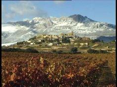 110 Ideas De Laguardia Biasteri Ciudad Medieval Bodegas La Muralla