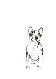 Apparently today is the day where the internet just wants me to find things for @Lia Hanley <3 Bull Terrier Print of Original Drawing Dog Art by corelladesign, $20.00
