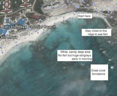 Barcelo Maya Palace Area For Snorkeling Beach Mexico