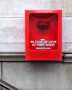 Binnenkant : Bij hevige liefde op het eerste gezicht....