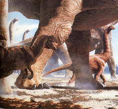 Allosaurus and Brachiosaurus painted by John Gurche for National Geographic. One of the classics!