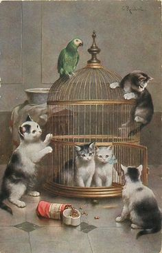 Cats in the cage and the parrot on top...