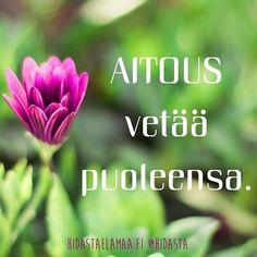Uskalla olla aito.  #aitous #vetovoima #oleaito #ihanasinä #uskallus #mietelause #inspiraatiota