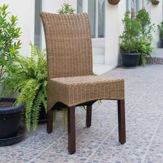 International Caravan Campbell Rattan Wicker Stained Finish Dining Chair With Mahogany Hardwood Frame In Salak Brown Sg- Solid Wood Dining Chairs, Upholstered Dining Chairs, Dining Chair Set, Transitional Dining Chairs, Wicker Furniture, Side Chairs, Rattan, Photoshop, Caravan
