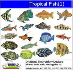8 Embroidery Tropical Fish Ideas Tropical Fish Tropical Fish