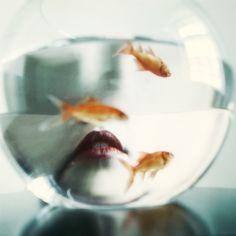 Just A Kiss, photographie de Maria Frodl