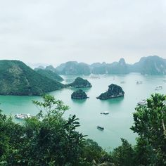 It's hard to believe that this time two years ago, I was in Vietnam! To date, Vietnam has been one of my favourite count. Ha Long Bay, Us Sailing, Fishing Villages, Tour Operator, Vietnam Travel, World Heritage Sites, The Locals, Cruise, Tours
