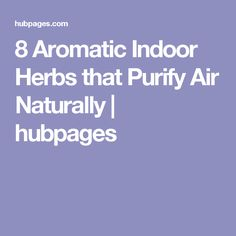 8 Aromatic Indoor Herbs that Purify Air Naturally | hubpages
