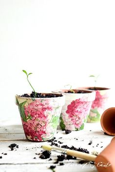 DIY: decoupaged terra cotta pots / Faça você mesmo: vaso de planta decorado com decupagem