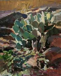 Image result for images desert cactus