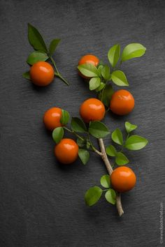 MINI ORANGES by Trakool Yodsuk, Chef of the Erawan Classic Thai and Fusion Restaurant. Today I share with you a wonderful dessert recipe that looks like a small tangerine, although it is sweet bean paste. It's easy-to-cook, extremely good-looking dish, which tastes so damn delicious that I can just suggest you to make them on your own! #food #chef #foodporn #orange #foodnchef #restaurant #delicious #tasty #oranges #foodblog #leaves #vegan #dessert #sweet #candy #pastry #beans #beanpaste…