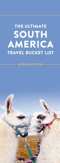 the ultimate south america travel bucket list. everything to see and do in South America that will blow your mind Machu Picchu, Backpacking South America, South America Travel, Cool Places To Visit, Places To Travel, Travel Destinations, Holiday Destinations, Titicaca, South America Destinations