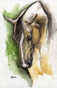 Palomino Arabian Horse Watercolor Portrait 1 by Angel Ciesniarska Watercolor Horse, Watercolor Animals, Watercolor Portraits, Watercolor Paintings, Angel Illustration, Horse Posters, Horse Artwork, Horse Print, Equine Art
