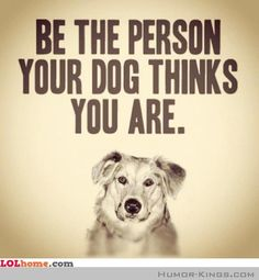 Monday wisdom from our canine companions: Be the person your dog thinks you are. My dog thinks I'm incredibly lovable, strong, capable, and awesome. and today I'm making a point to believe her. ❤️ Who does your dog think you are? Animal Quotes, Dog Quotes, Life Quotes, Funny Dog Sayings, Animal Posters, Great Quotes, Quotes To Live By, Inspirational Quotes, Motivational