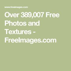 Over 389,007 Free Photos and Textures - FreeImages.com