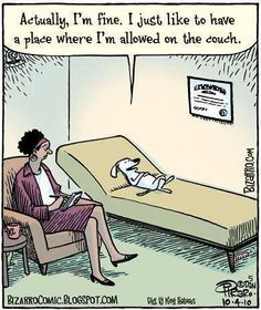 A little therapy humor | Actually, I'm fine. I just like to have a place where I'm allowed on the couch.