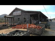 Across the country, more consumers than ever are visiting farm markets for fresh fruits and vegetables.  There's a movement to know who grew the food, and to buy it directly from the source.  Kenny Burgamy visits one North Georgia farm market that offers fresh produce, along with beautiful mountain scenery.