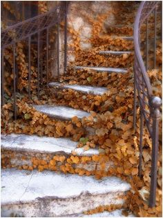 What if autumn is not a place outside?