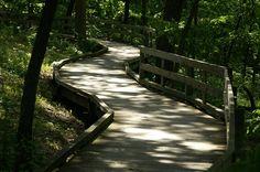 Fontenelle Forest - Omaha, Nebraska. Lots of walking trails!