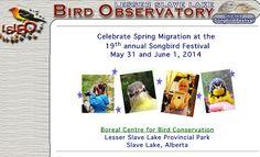 Alberta, Canada - Lesser Slave Lake Bird Observatory  #BirdDay