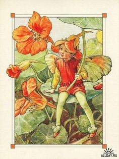 Illustration for the Nasturtium Fairy from Flower Fairies of the Alphabet, Author / Illustrator Cicely Mary Barker Cicely Mary Barker, Elfen Fantasy, Fantasy Art, Flower Fairies, Fairy Land, Fairy Tales, Fairy Pictures, Vintage Fairies, Art And Illustration