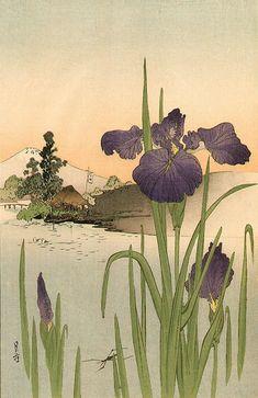 Ukiyo-e Archive of Japanese Prints Iris Painting, Japan Painting, Japanese Drawings, Japanese Prints, Art And Illustration, Japanese Woodcut, Art Asiatique, Art Japonais, China Art