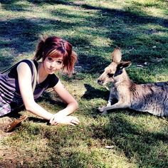 Lindsey Stirling.....lol I love this image it very funny not just the human likes her but the animals like her too and communicate with very well....lol