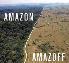 Amazon/Amazoff #savetheplanet