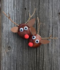 Rudolph aus Kastanien basteln // www.ch/bricos/ - fleurysylvie : Rudolph aus Kastanien basteln // www. Autumn Crafts, Fall Crafts For Kids, Nature Crafts, Diy For Kids, Kids Crafts, Intarsia Wood Patterns, Wood Craft Patterns, Ideas Para Trabajar La Madera, Conkers Craft